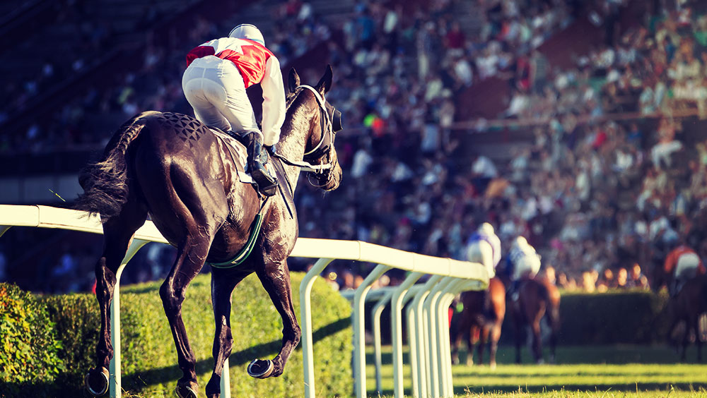 Sports | Equestrian, British Champions Day, October, Ascot, Berkshire, UK