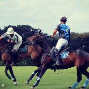 Sports | Polo, Cartier Queen's Cup, May, Surrey, UK
