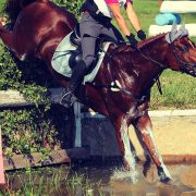 Sports | Equestrian, Barbury Horse Trials, July, Marlborough, UK