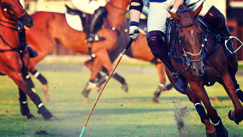 Sports | Polo, Cowdray Park Gold Cup, July, West Sussex, UK