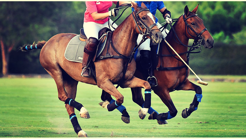 Sports | Polo, The International Day, July, Windsor, UK