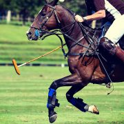 Sports | Polo, Hublot Polo Gold Cup, August, Gstaad, Switzerland