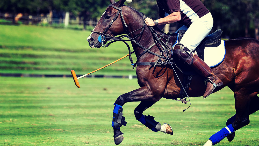 Sports   Polo, Hublot Polo Gold Cup, August, Gstaad, Switzerland