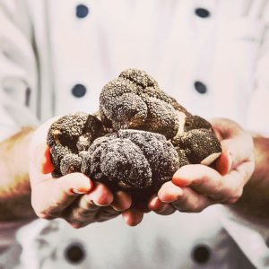 Hunting Season in Italy's Truffle Country