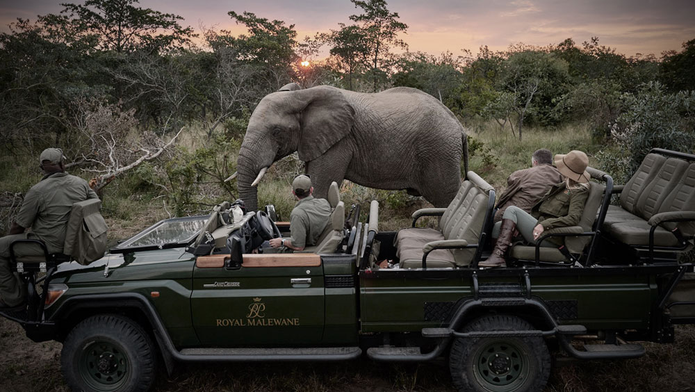 Luxury Experiences | Royal Malewane, Luxury Safari lodge, South Africa Greater Kruger National Park