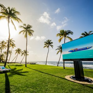 C SEED 201 — The world's largest outdoor TV