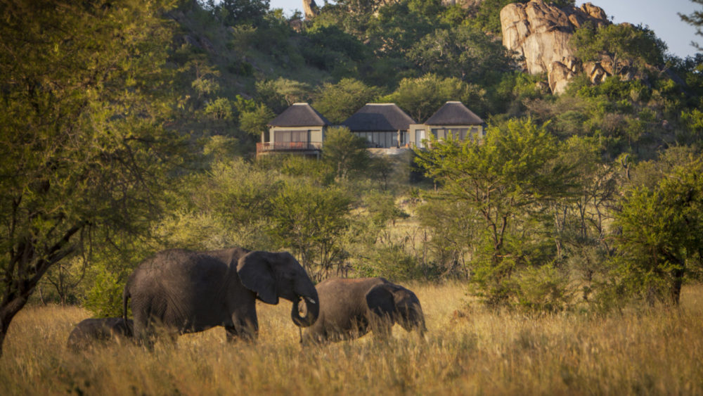 Make Four Seasons your Safari home this August with a new private villa experience