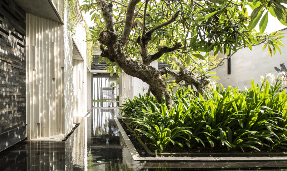 Explore the Architectural Haven of Bali's Bukit Peninsula at Alila Uluwatu